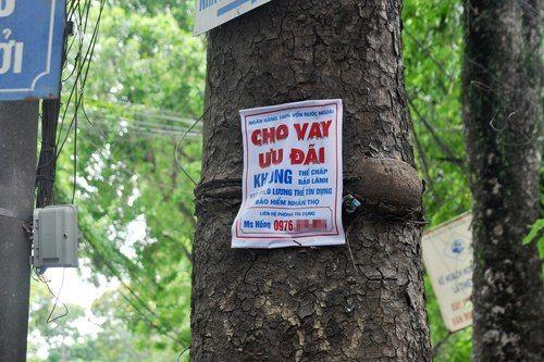tiếp thị vay vốn từ nhà vệ sinh đến gốc cây 2